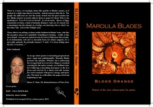 Blood Orange book cover